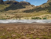 Habitat heterogeneity rather than the limits of protected areas influence bird communities in an Andean biosphere reserve